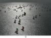 © TDBI 2009 – Jacques Vapillon / Jean-Marie Liot