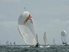 090515-Tour De Belle Ile 2015, La Trinité Sur Mer(FR)